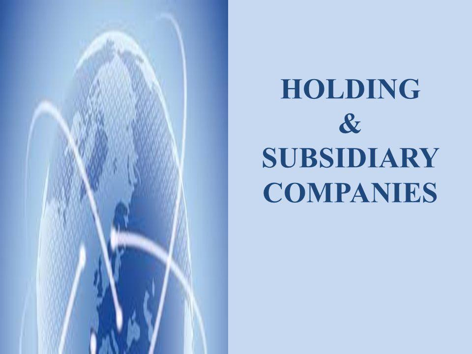 HOLDING & SUBSIDIARY COMPANIES