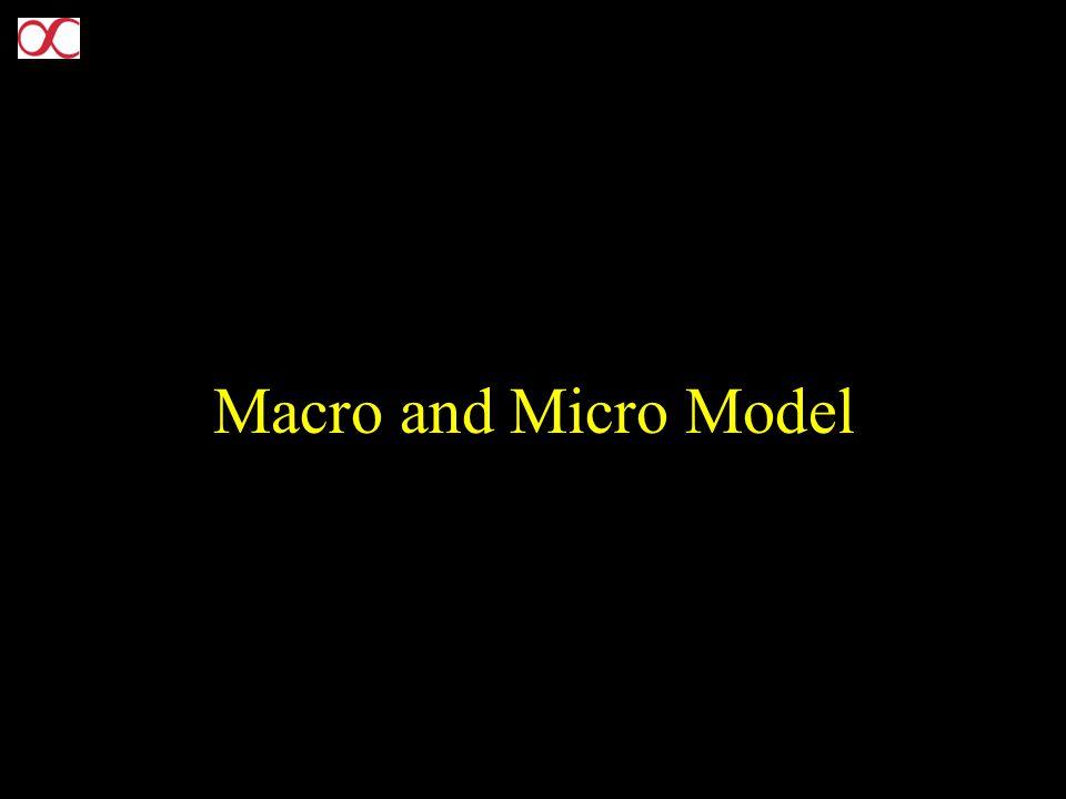 Macro and Micro Model