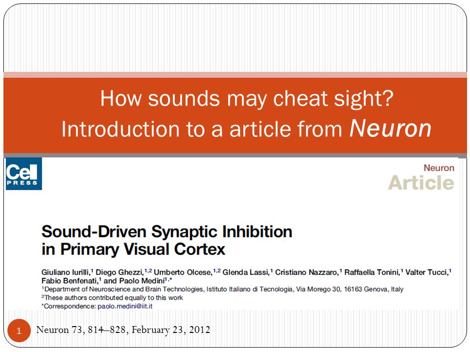 How sounds may cheat sight? Introduction to a article from Neuron Neuron 73, 814–828, February 23, 2012 1