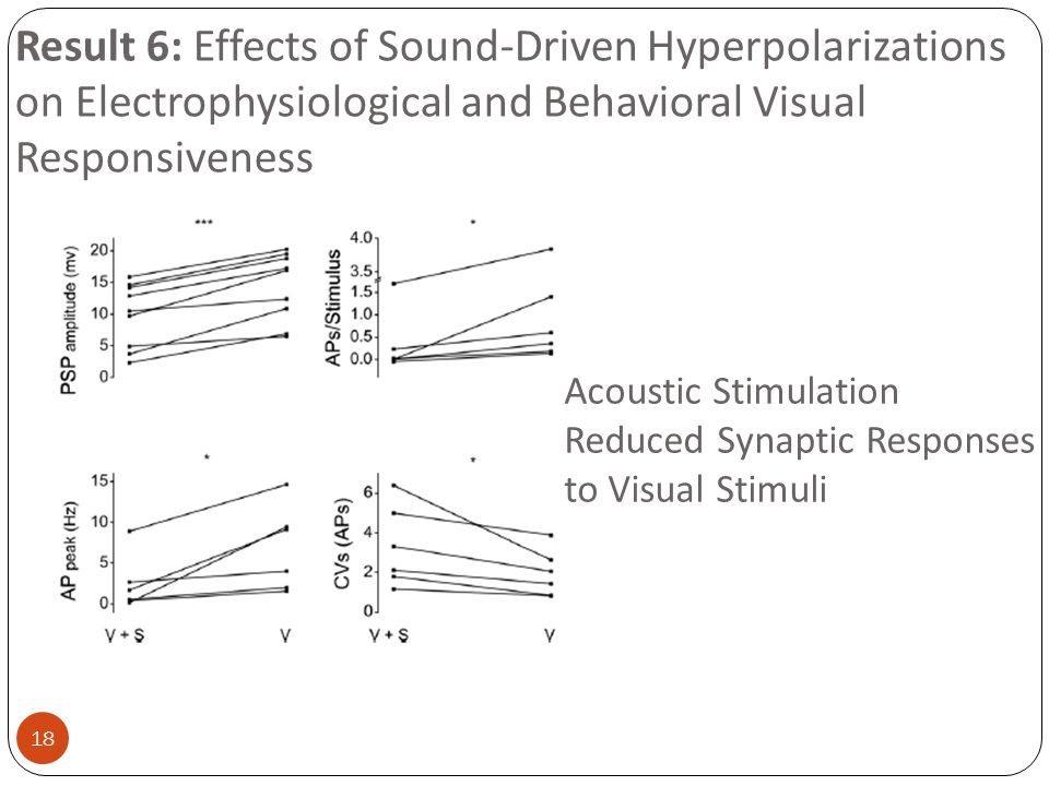 18 Result 6: Effects of Sound-Driven Hyperpolarizations on Electrophysiological and Behavioral Visual Responsiveness Acoustic Stimulation Reduced Syna