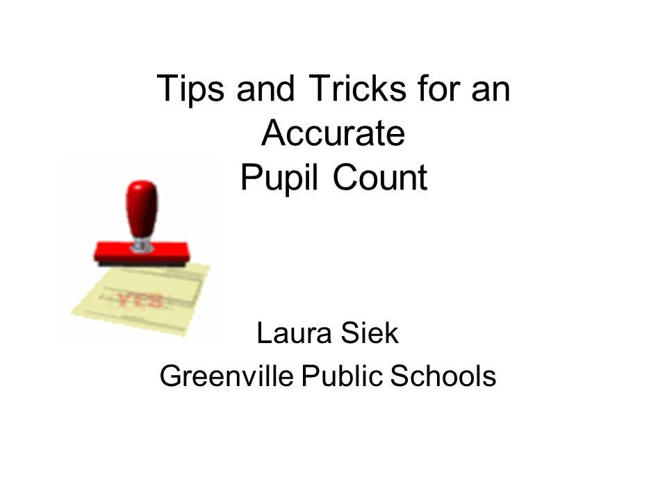 Tips and Tricks for an Accurate Pupil Count Laura Siek Greenville Public Schools
