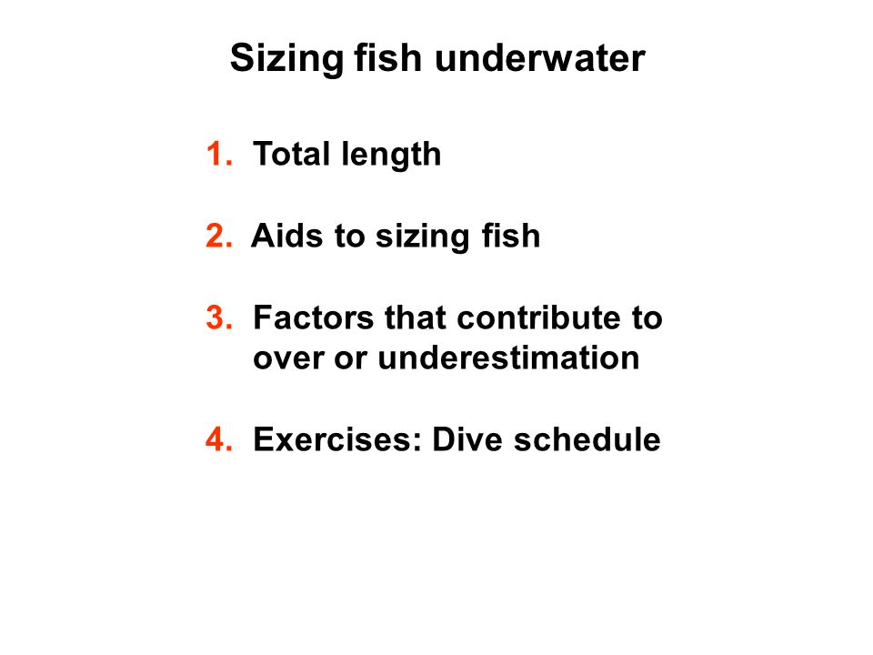 Sizing fish underwater 1.Total length 2. Aids to sizing fish 3.