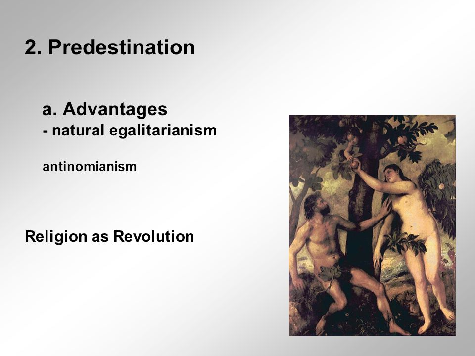 2. Predestination a. Advantages - natural egalitarianism antinomianism Religion as Revolution