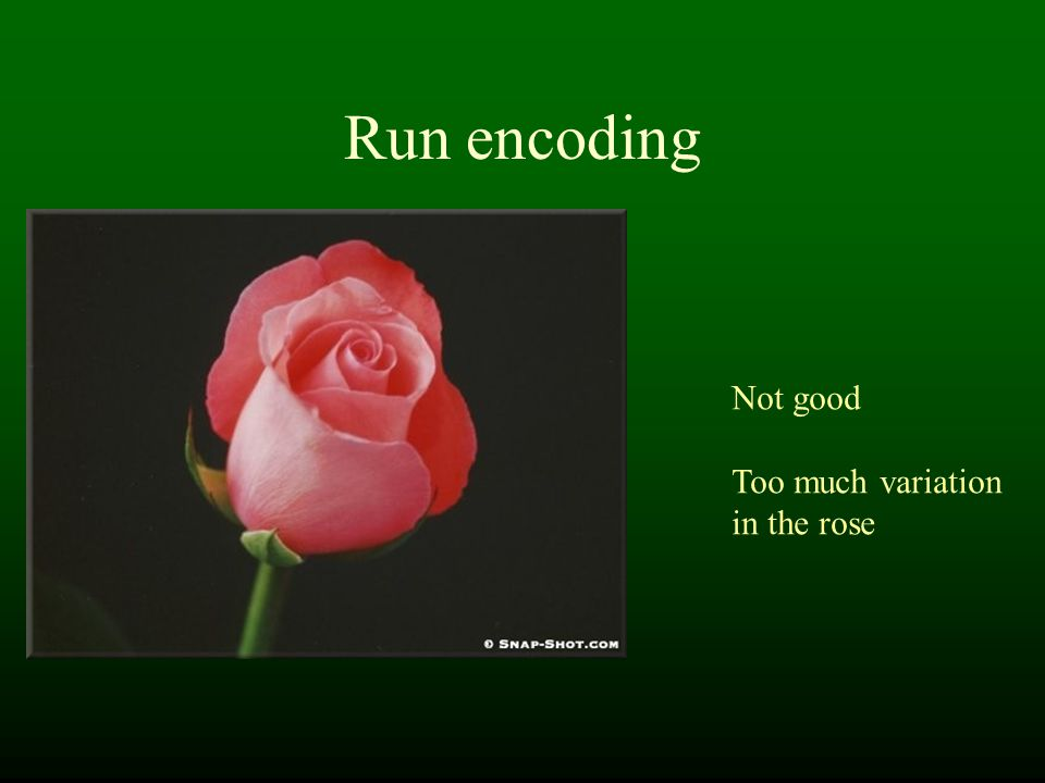 Run encoding Not good Too much variation in the rose