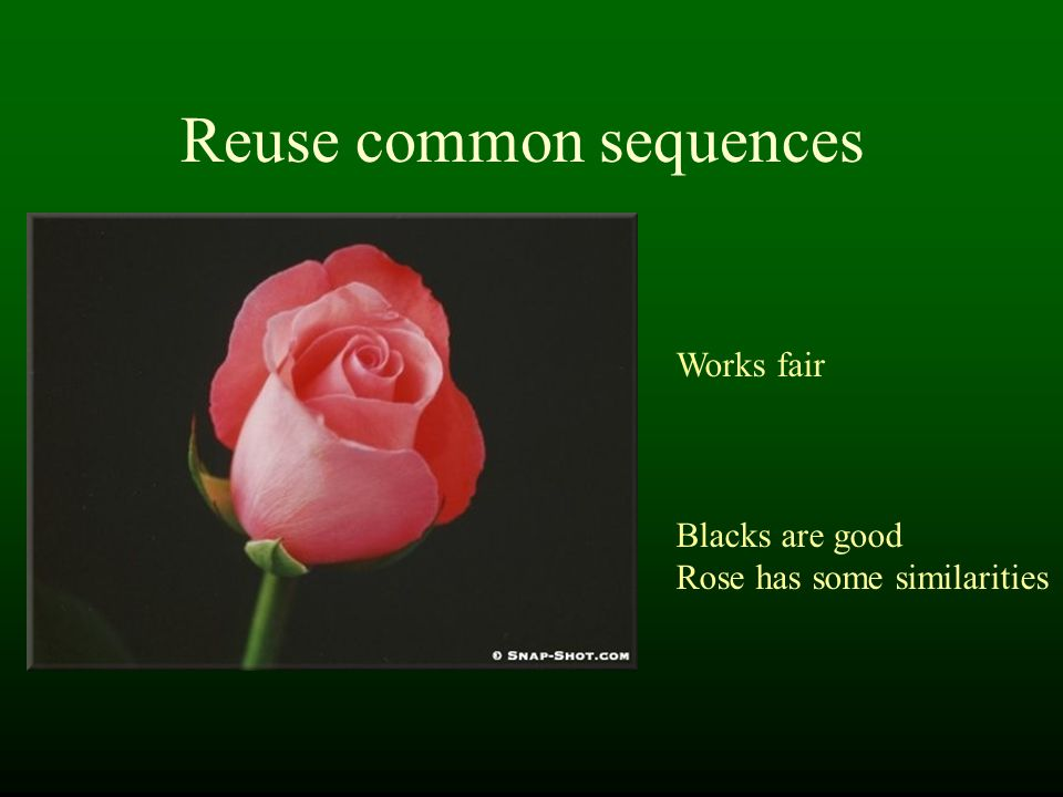 Reuse common sequences Works fair Blacks are good Rose has some similarities