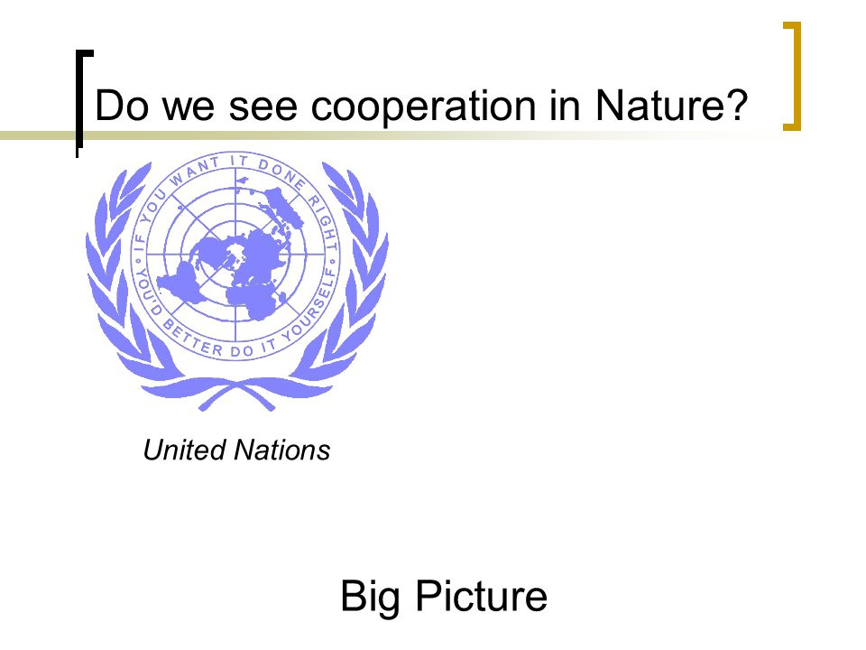 United Nations Big Picture Do we see cooperation in Nature