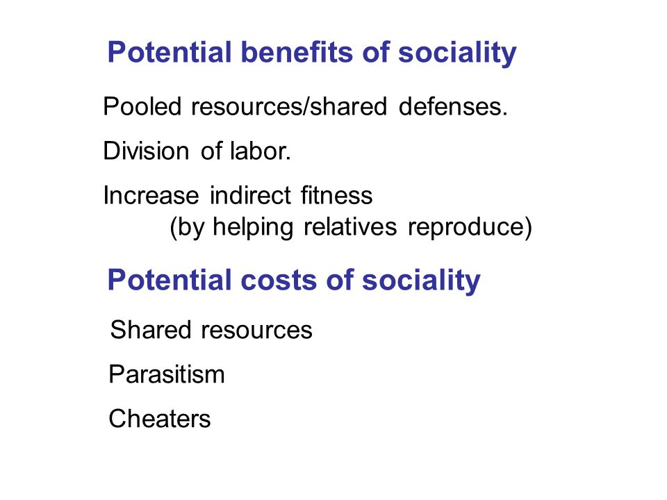 Potential benefits of sociality Pooled resources/shared defenses. Increase indirect fitness (by helping relatives reproduce) Potential costs of social
