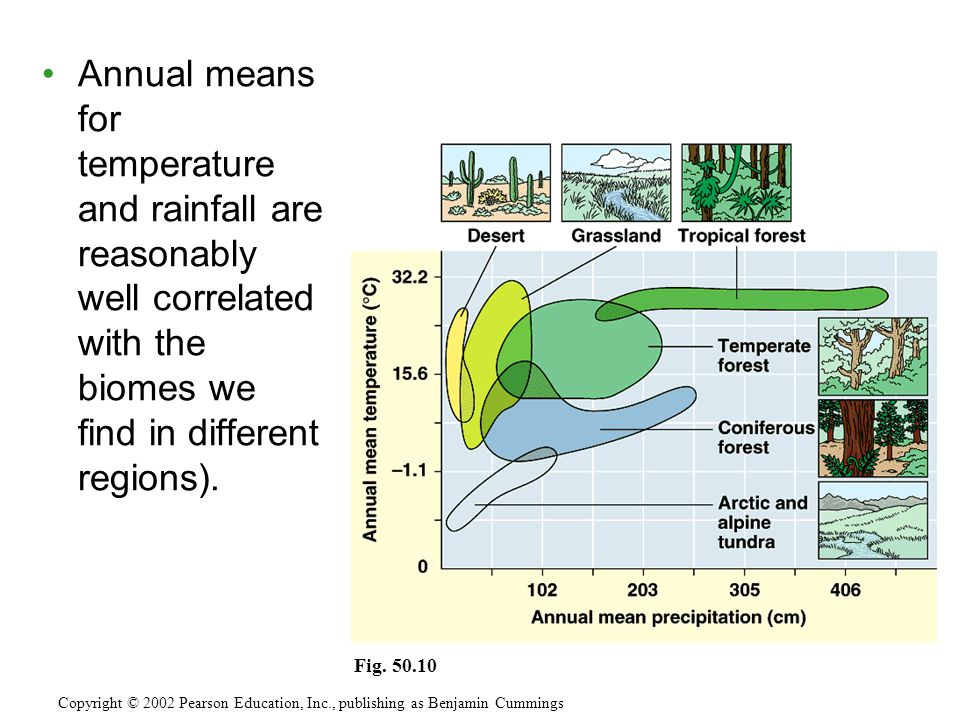 Annual means for temperature and rainfall are reasonably well correlated with the biomes we find in different regions).