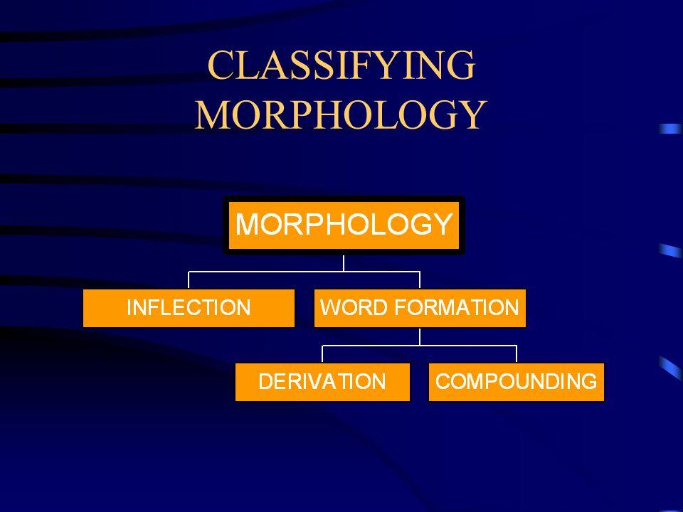 CLASSIFYING MORPHOLOGY