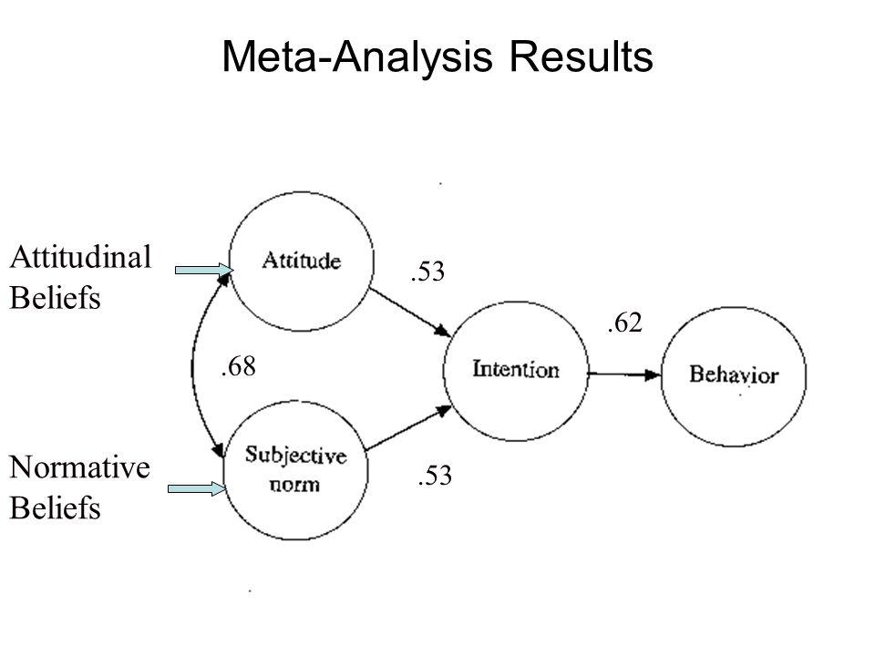 Attitudinal Beliefs Normative Beliefs.53.68.62 Meta-Analysis Results