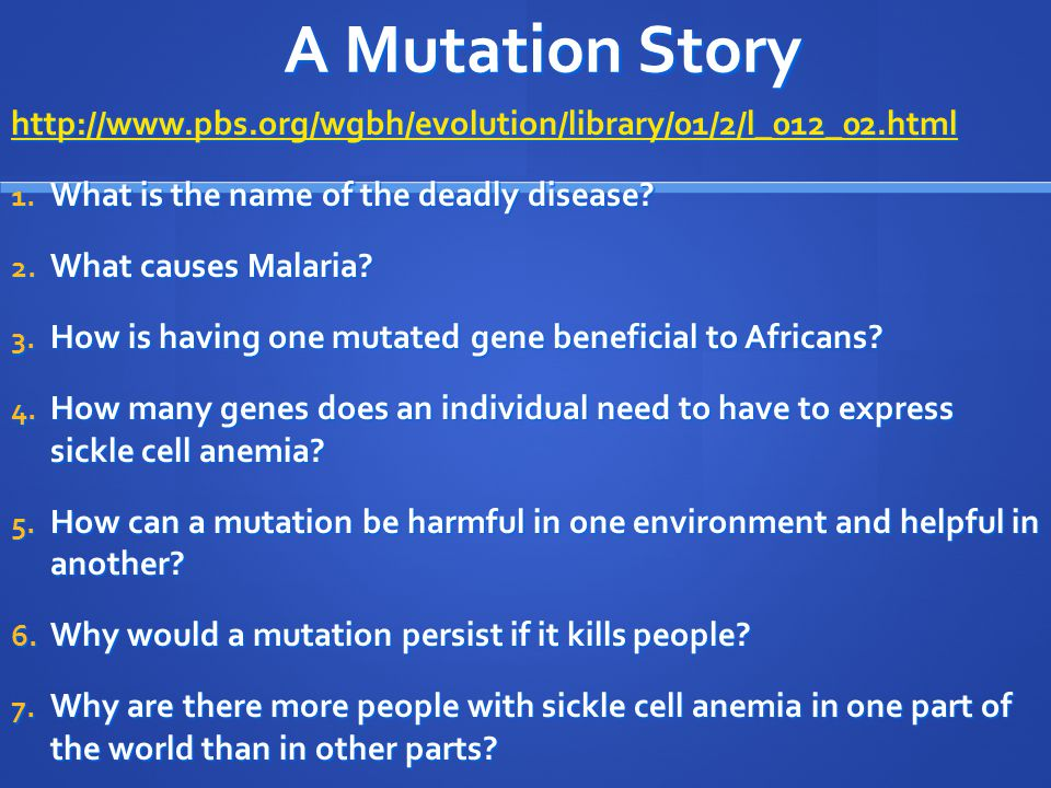 A Mutation Story http://www.pbs.org/wgbh/evolution/library/01/2/l_012_02.html 1. What is the name of the deadly disease? 2. What causes Malaria? 3. Ho