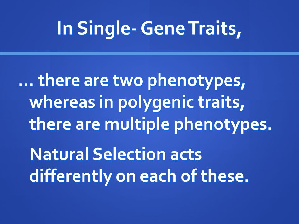 In Single- Gene Traits, … there are two phenotypes, whereas in polygenic traits, there are multiple phenotypes. Natural Selection acts differently on