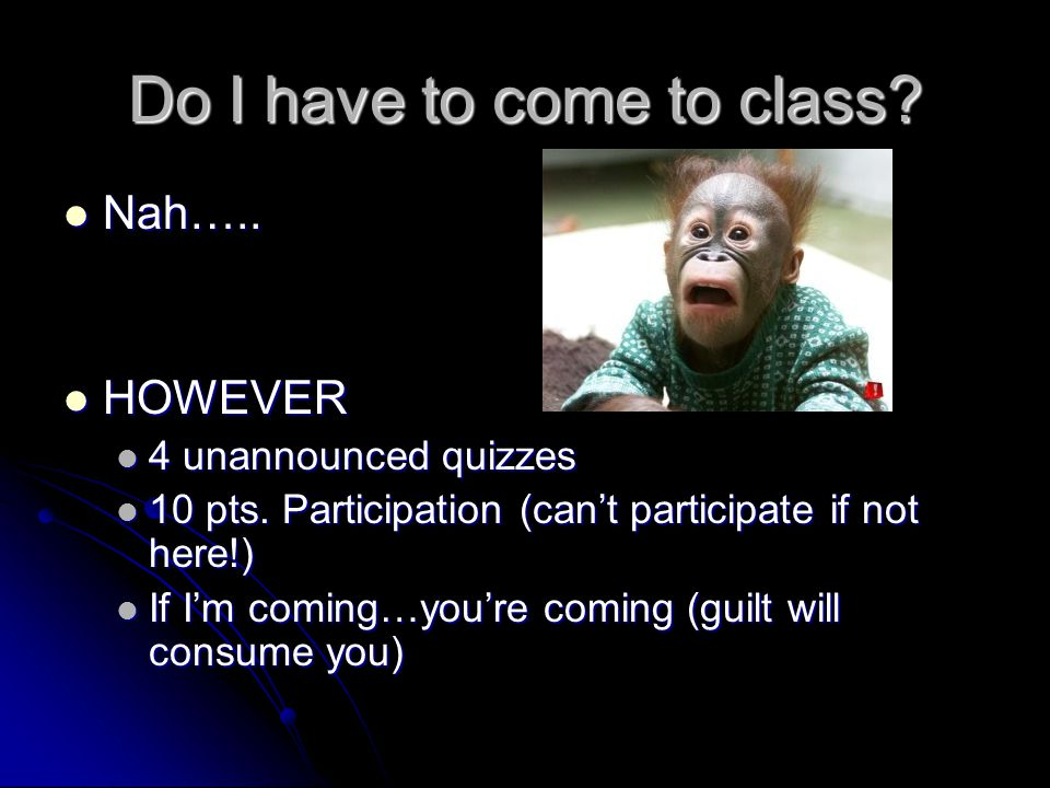 Do I have to come to class.Nah….. Nah…..