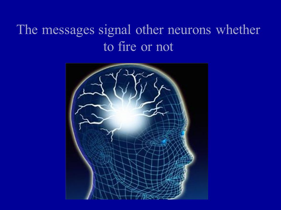 The messages signal other neurons whether to fire or not