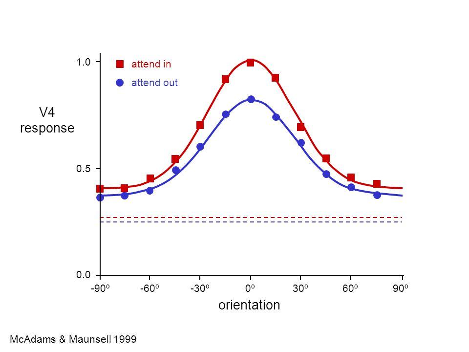 R1R1 Sclar & Freeman 1982 response (spikes/s) orientation 80% contrast 40% contrast 80 0 -25º+25º0º0º