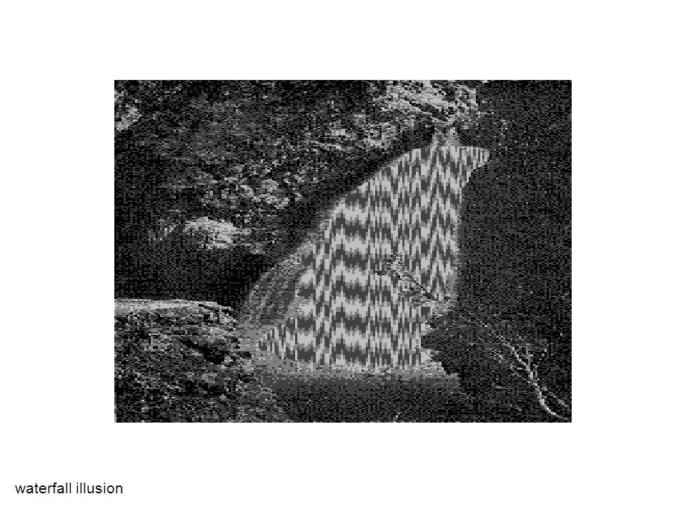 Kohn & Movshon 2004 0 50 100 -180 180 0 direction of motion spikes/s adapting direction