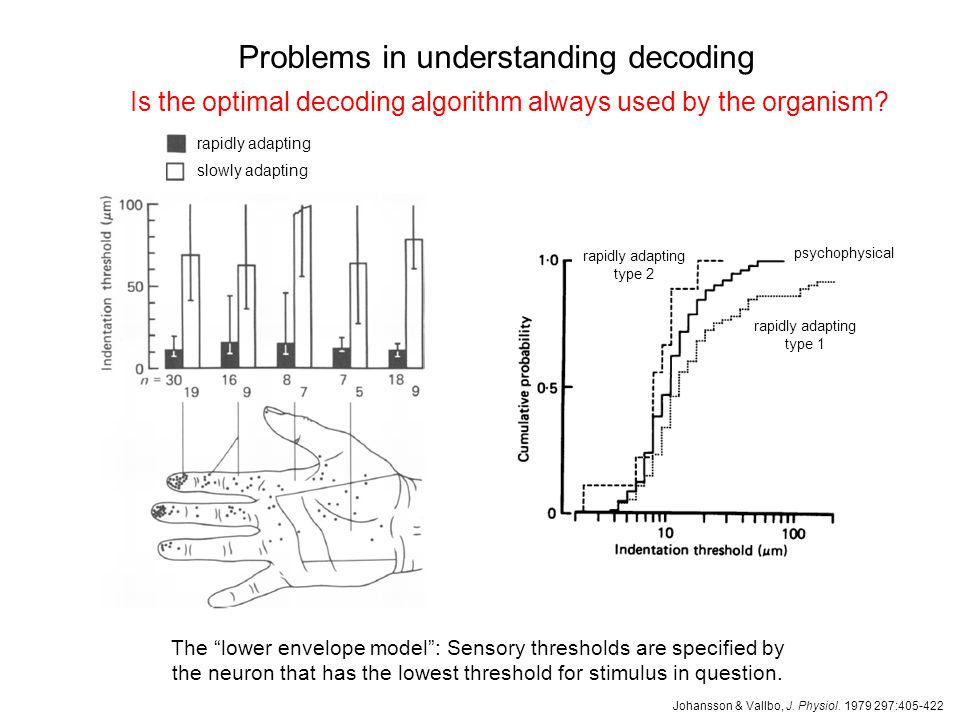 Problems in understanding decoding How much of a spike train should we consider.