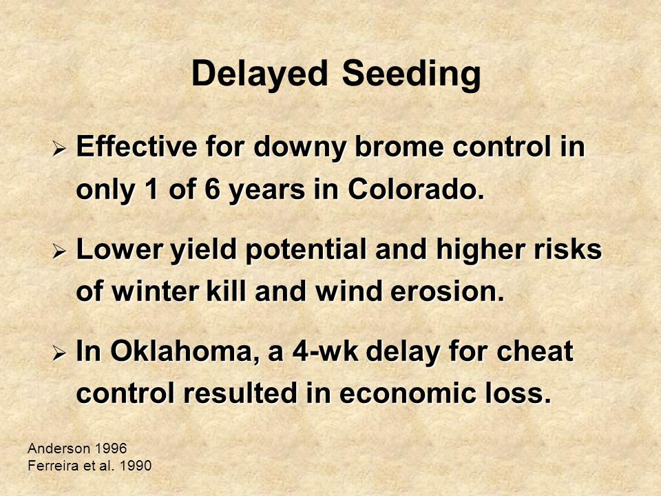 Delayed Seeding  Effective for downy brome control in only 1 of 6 years in Colorado.