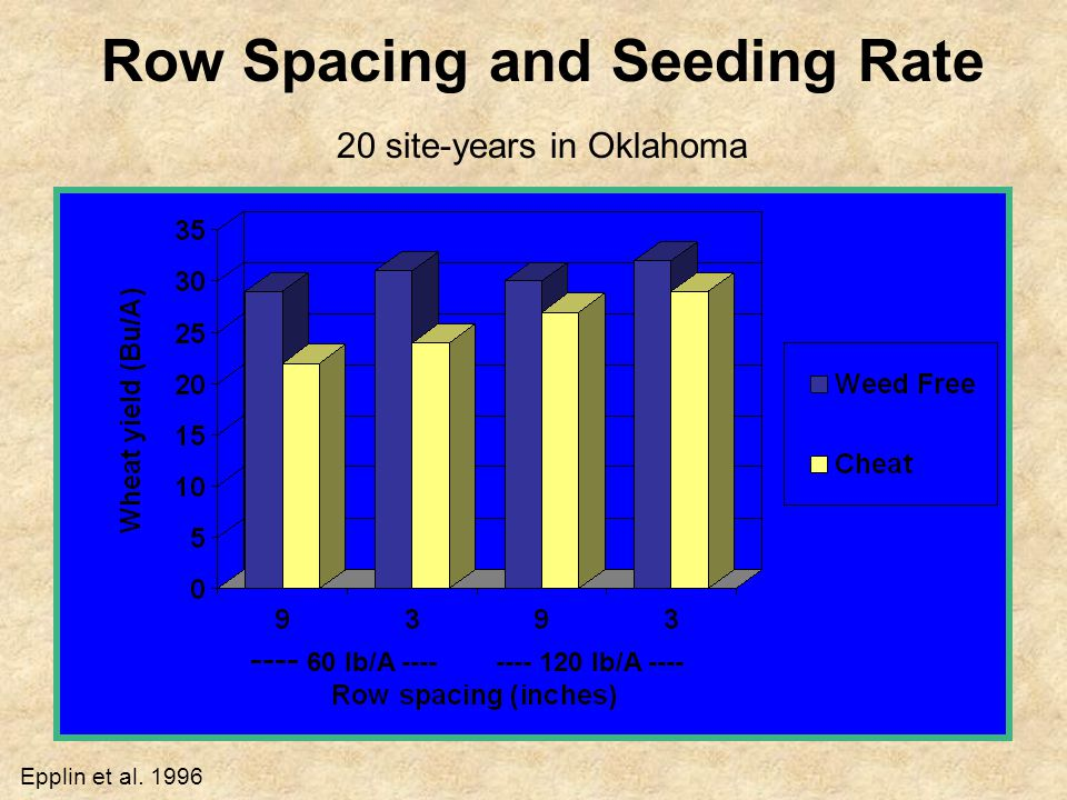 Row Spacing and Seeding Rate 20 site-years in Oklahoma ---- 60 lb/A ---- ---- 120 lb/A ---- Epplin et al.