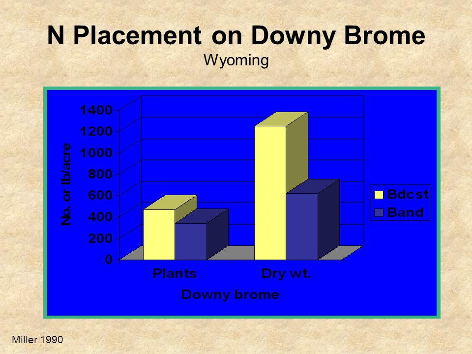 N Placement on Downy Brome Wyoming Miller 1990