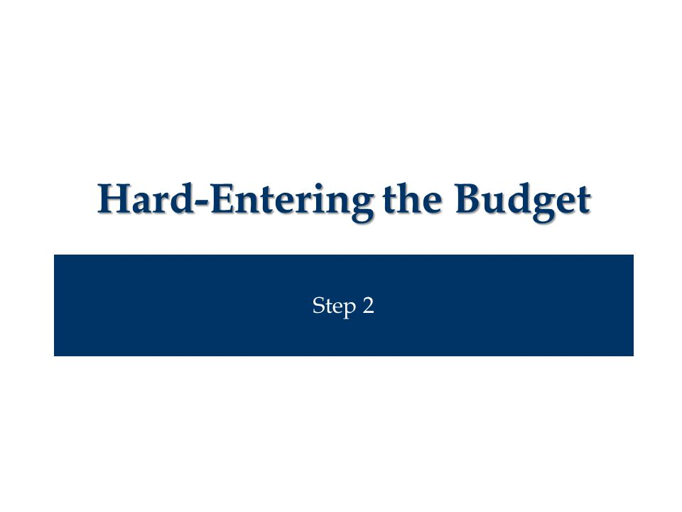 Step 2 Hard-Entering the Budget