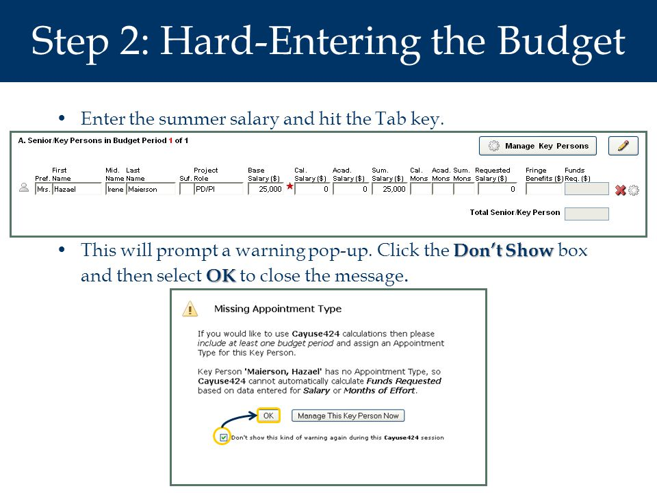 Step 2: Hard-Entering the Budget Enter the summer salary and hit the Tab key.