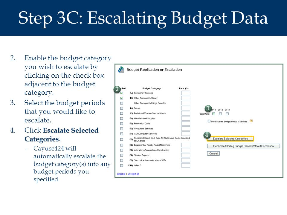 Step 3C: Escalating Budget Data 2.Enable the budget category you wish to escalate by clicking on the check box adjacent to the budget category.