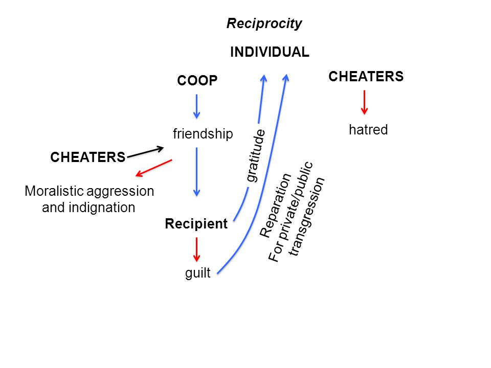 Reciprocity friendship hatred Moralistic aggression and indignation CHEATERS COOP Recipient INDIVIDUAL gratitude guilt Reparation For private/public t