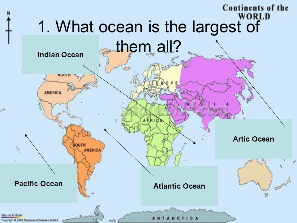 1. What ocean is the largest of them all Artic Ocean Indian Ocean Atlantic Ocean Pacific Ocean