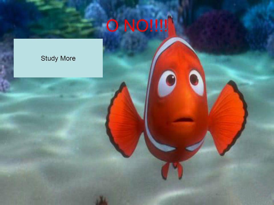 O NO!!!! Study More