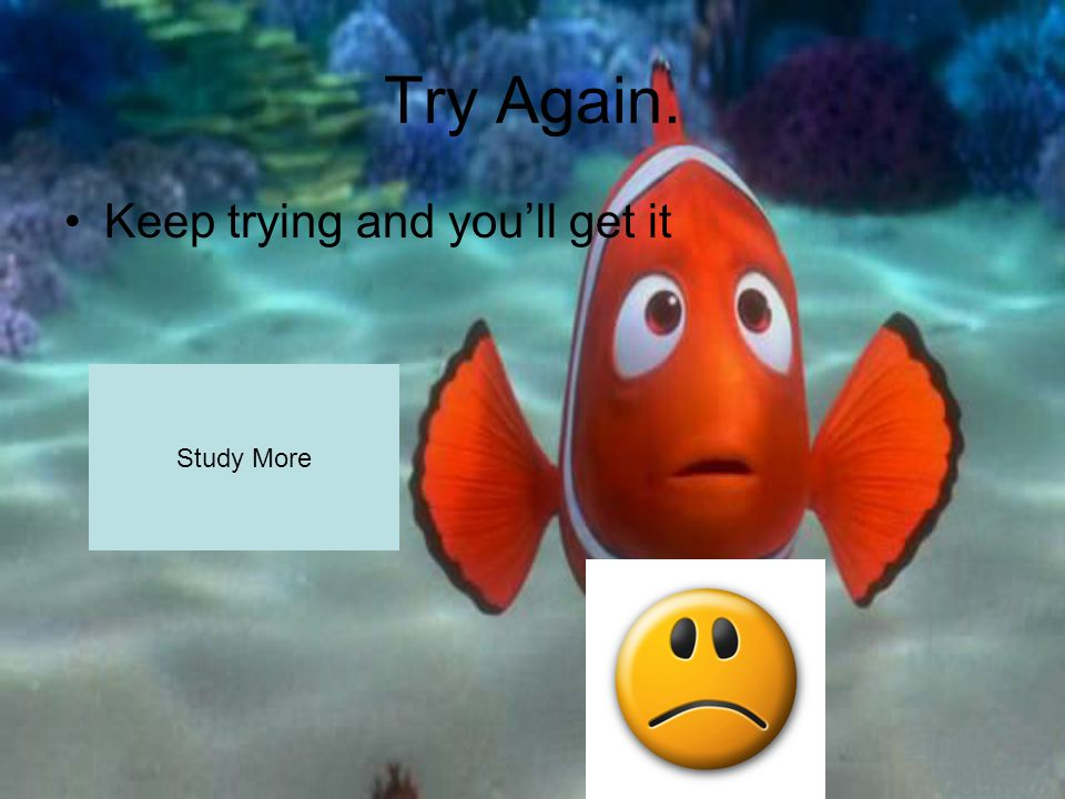 Try Again. Keep trying and you'll get it Study More