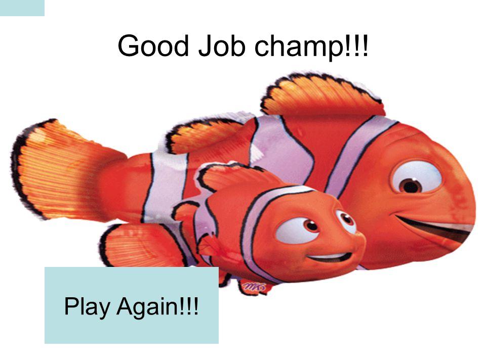 Good Job champ!!! Play Again!!!