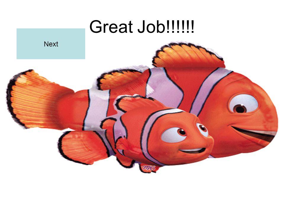 Great Job!!!!!! Next