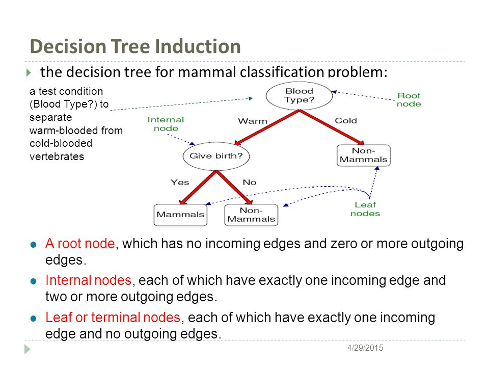 Decision Tree Induction  the decision tree for mammal classification problem: l A root node, which has no incoming edges and zero or more outgoing edges.