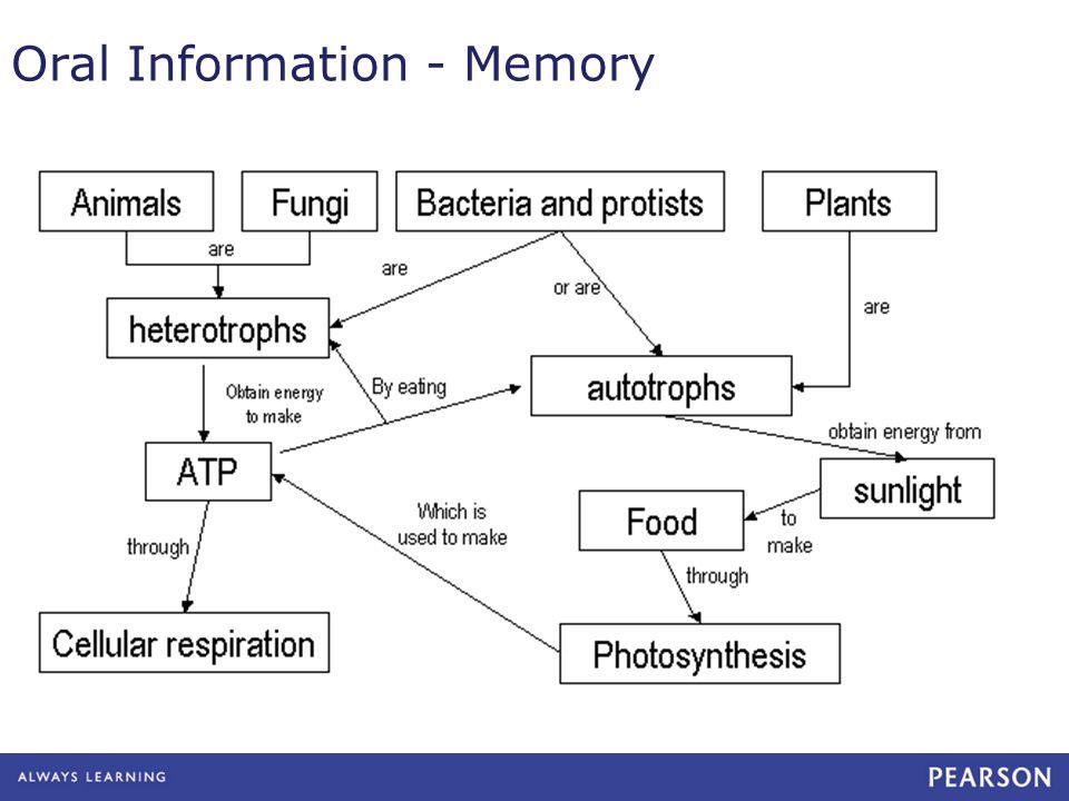 Oral Information - Memory