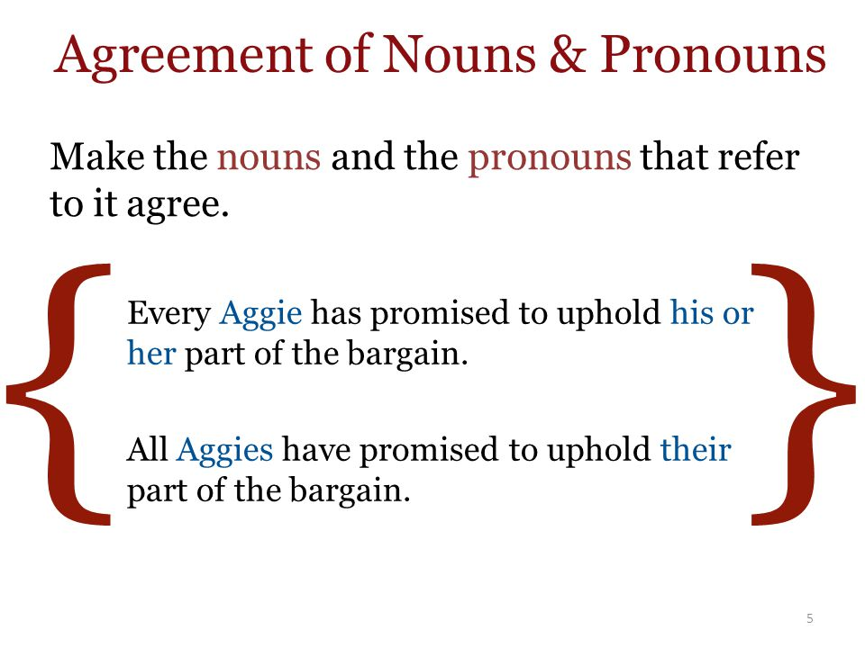 { } Make the nouns and the pronouns that refer to it agree.