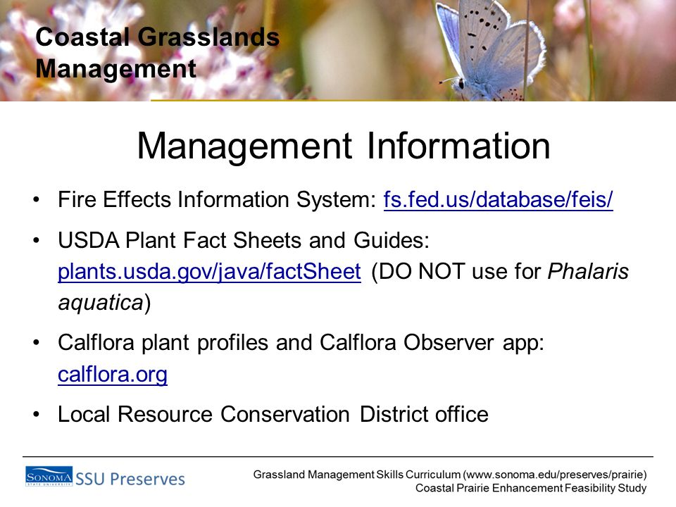 Coastal Grasslands Management Management Information Fire Effects Information System: fs.fed.us/database/feis/ USDA Plant Fact Sheets and Guides: plants.usda.gov/java/factSheet (DO NOT use for Phalaris aquatica) Calflora plant profiles and Calflora Observer app: calflora.org Local Resource Conservation District office