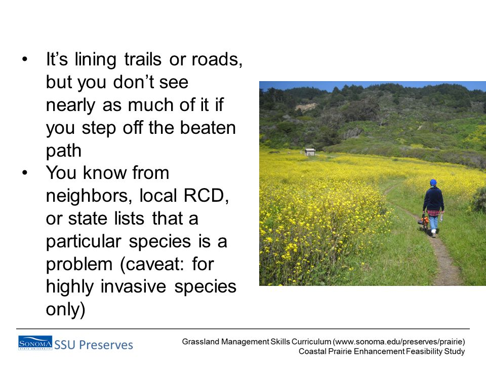 It's lining trails or roads, but you don't see nearly as much of it if you step off the beaten path You know from neighbors, local RCD, or state lists that a particular species is a problem (caveat: for highly invasive species only)