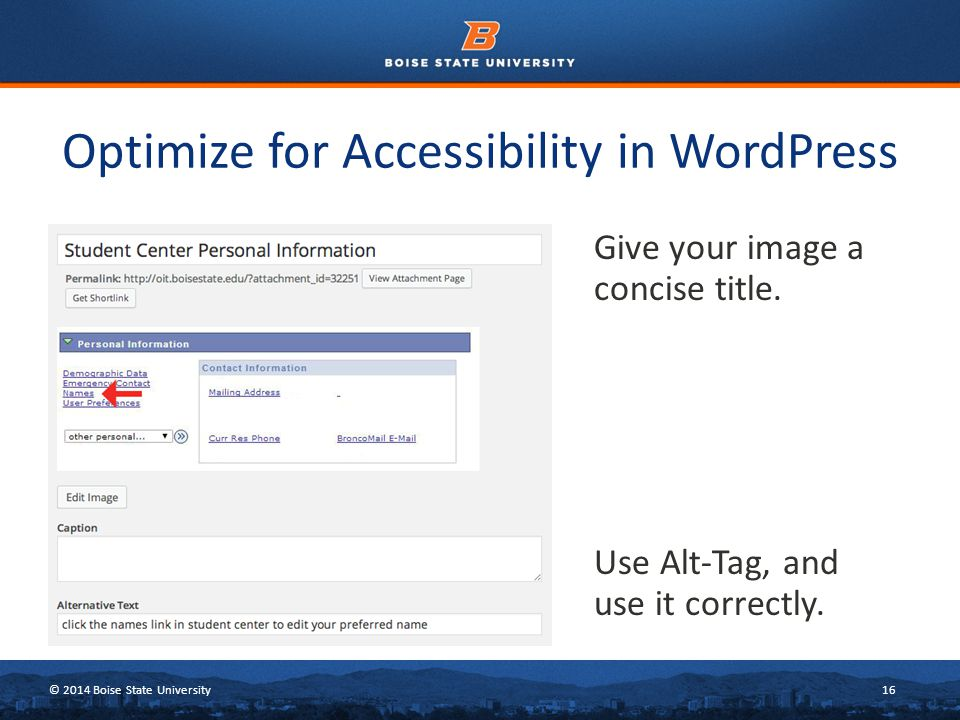© 2014 Boise State University16 Optimize for Accessibility in WordPress Give your image a concise title.