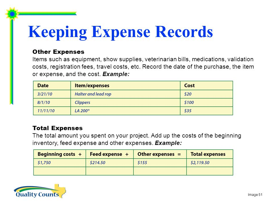 Keeping Expense Records Total Expenses The total amount you spent on your project.