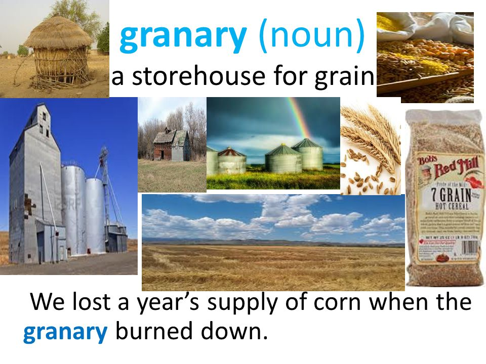 granary (noun) a storehouse for grain We lost a year's supply of corn when the granary burned down.
