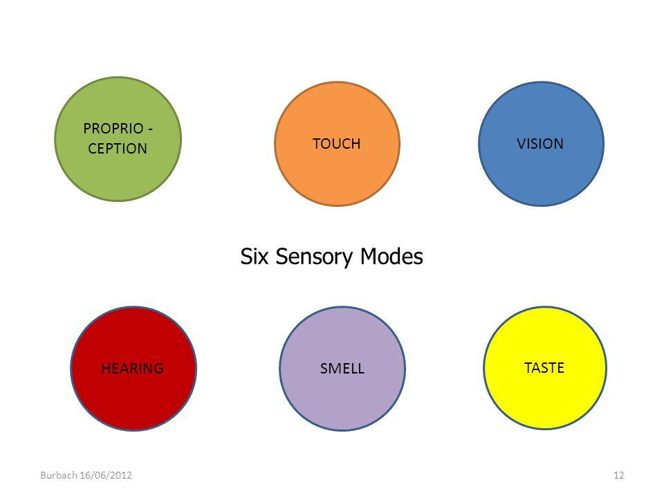 PROPRIO - CEPTION TOUCHVISION HEARINGSMELL TASTE Six Sensory Modes Burbach 16/06/201212