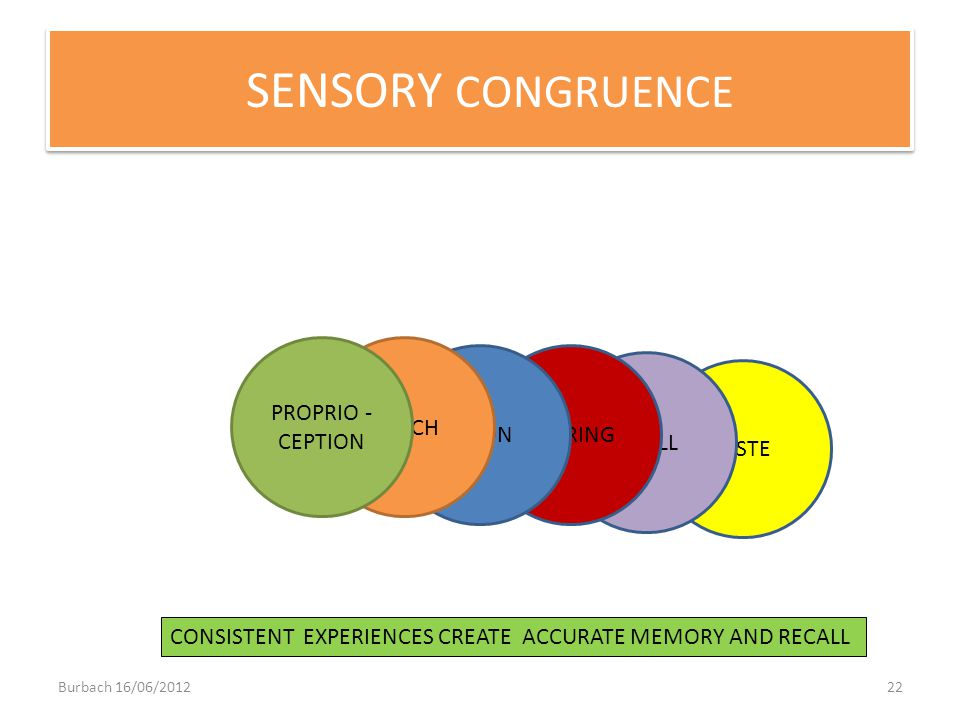 TASTE SMELL HEARINGVISION TOUCH PROPRIO - CEPTION SENSORY CONGRUENCE CONSISTENT EXPERIENCES CREATE ACCURATE MEMORY AND RECALL Burbach 16/06/201222