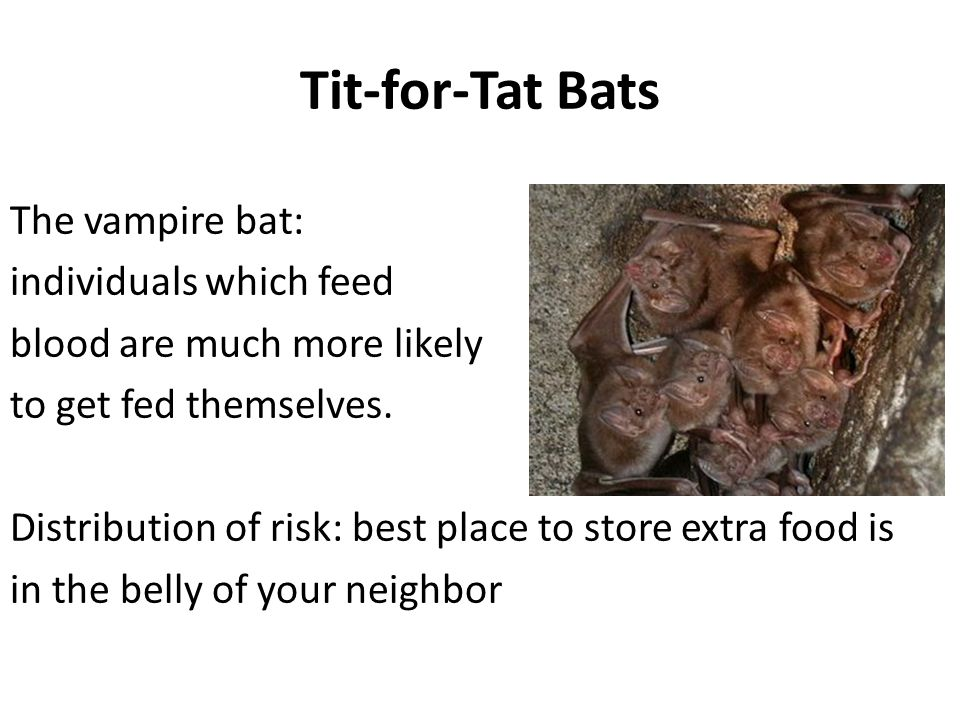 Tit-for-Tat Bats The vampire bat: individuals which feed blood are much more likely to get fed themselves. Distribution of risk: best place to store e
