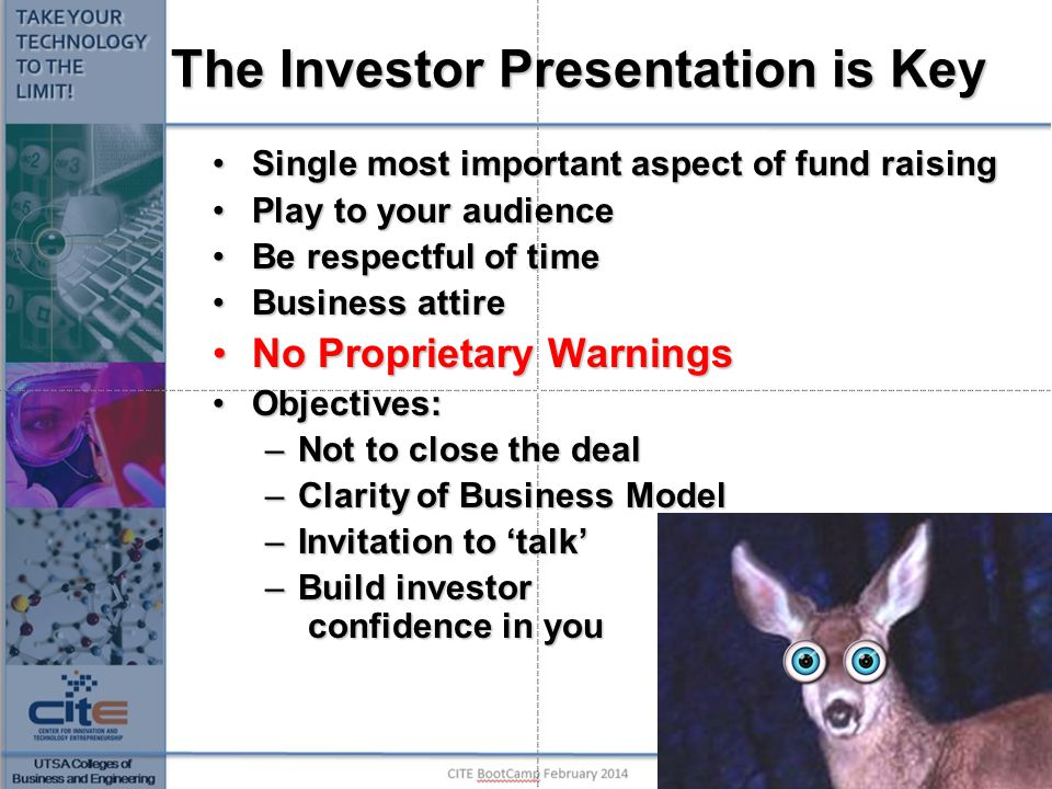 The Investor Presentation is Key Single most important aspect of fund raisingSingle most important aspect of fund raising Play to your audiencePlay to