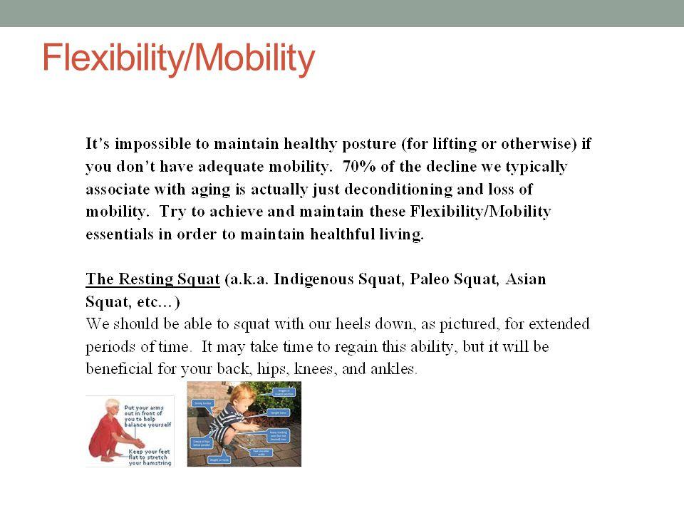 Flexibility/Mobility