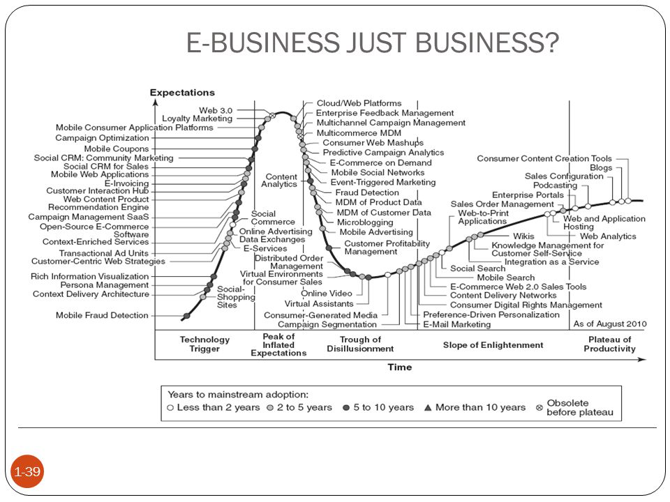 E-BUSINESS JUST BUSINESS? 1-39