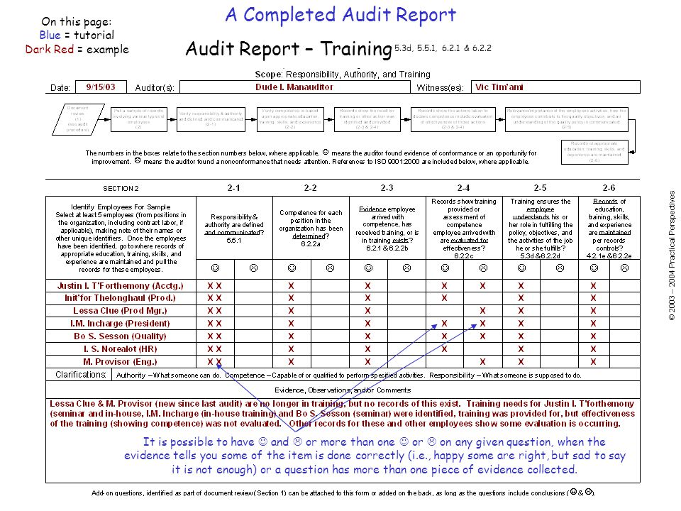 © 2003 – 2004 Practical Perspectives Audit Report – Training 5.3d, 5.5.1, 6.2.1 & 6.2.2 Audit Reports (like this one) have been developed to cover all