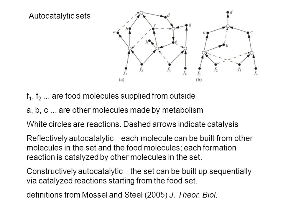 Autocatalytic sets f 1, f 2... are food molecules supplied from outside a, b, c...