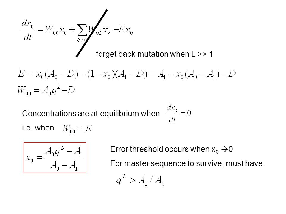 forget back mutation when L >> 1 Concentrations are at equilibrium when i.e.